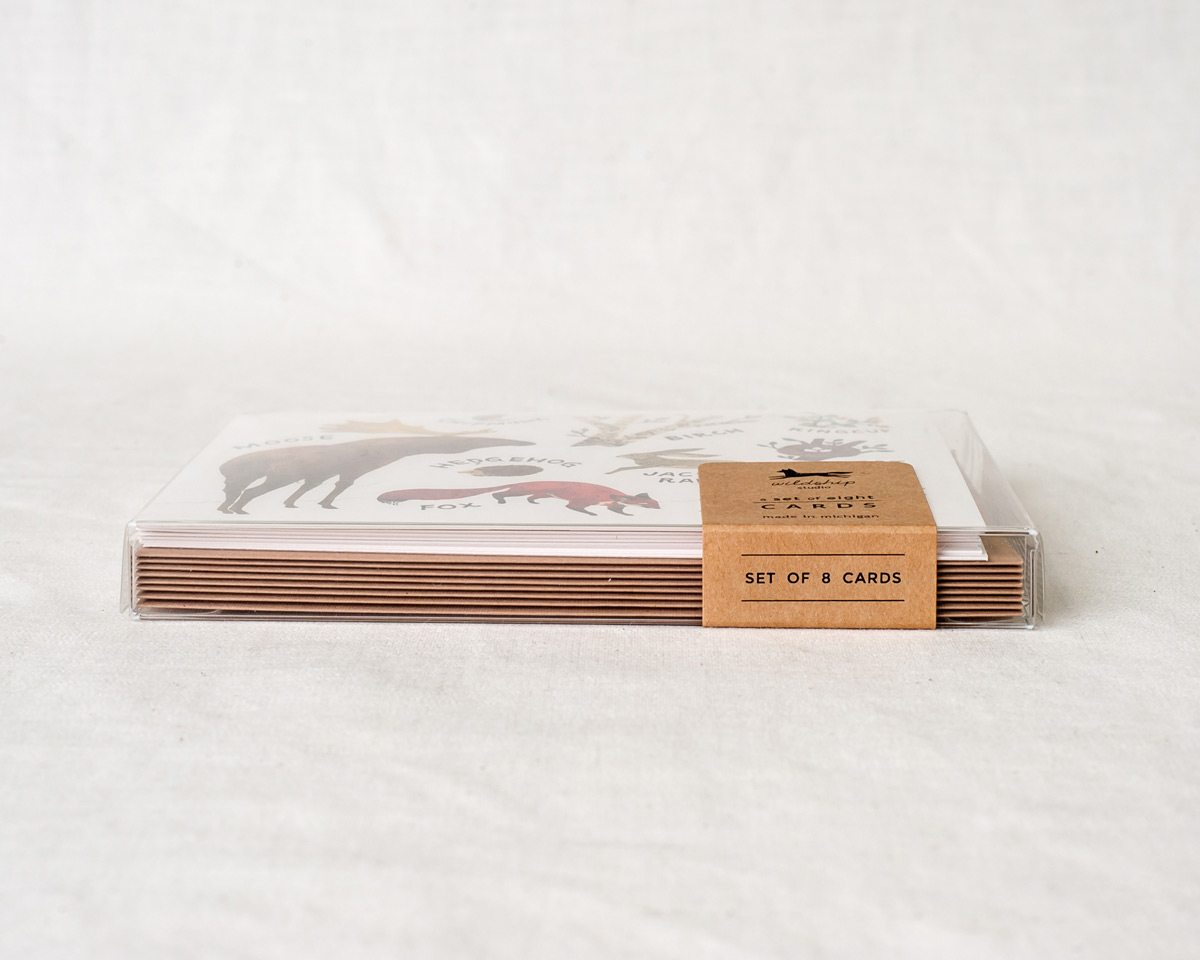 horizontal packaged boxed set of eight greeting cards stationery