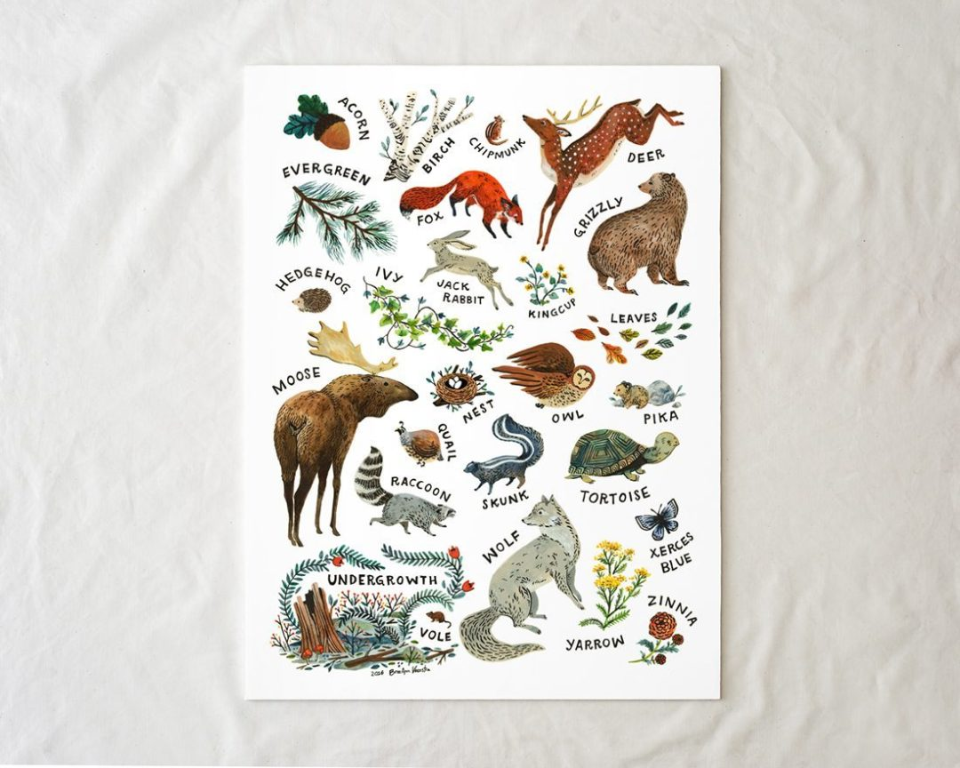 Woodland Alphabet Art Poster by Wildship Studio