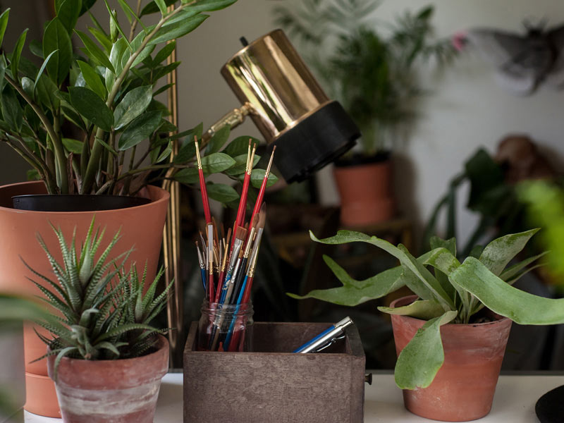 Plants and paintbrushes at Wildship Studio