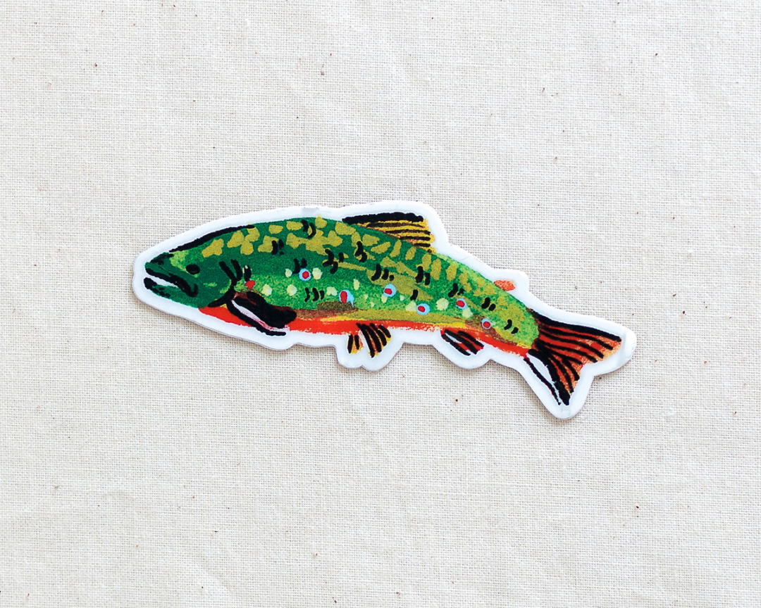 cute brook trout fish vinyl sticker by wildship studio