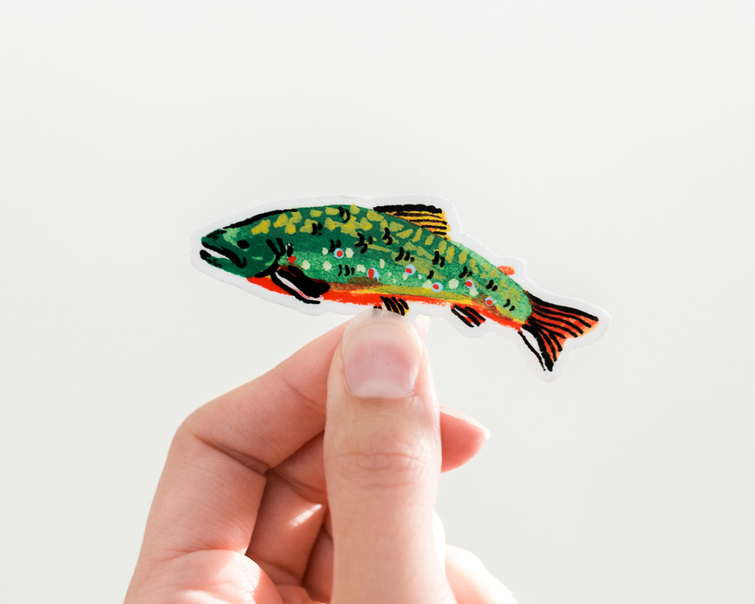 hand holding a cute brook trout fish vinyl sticker by wildship studio