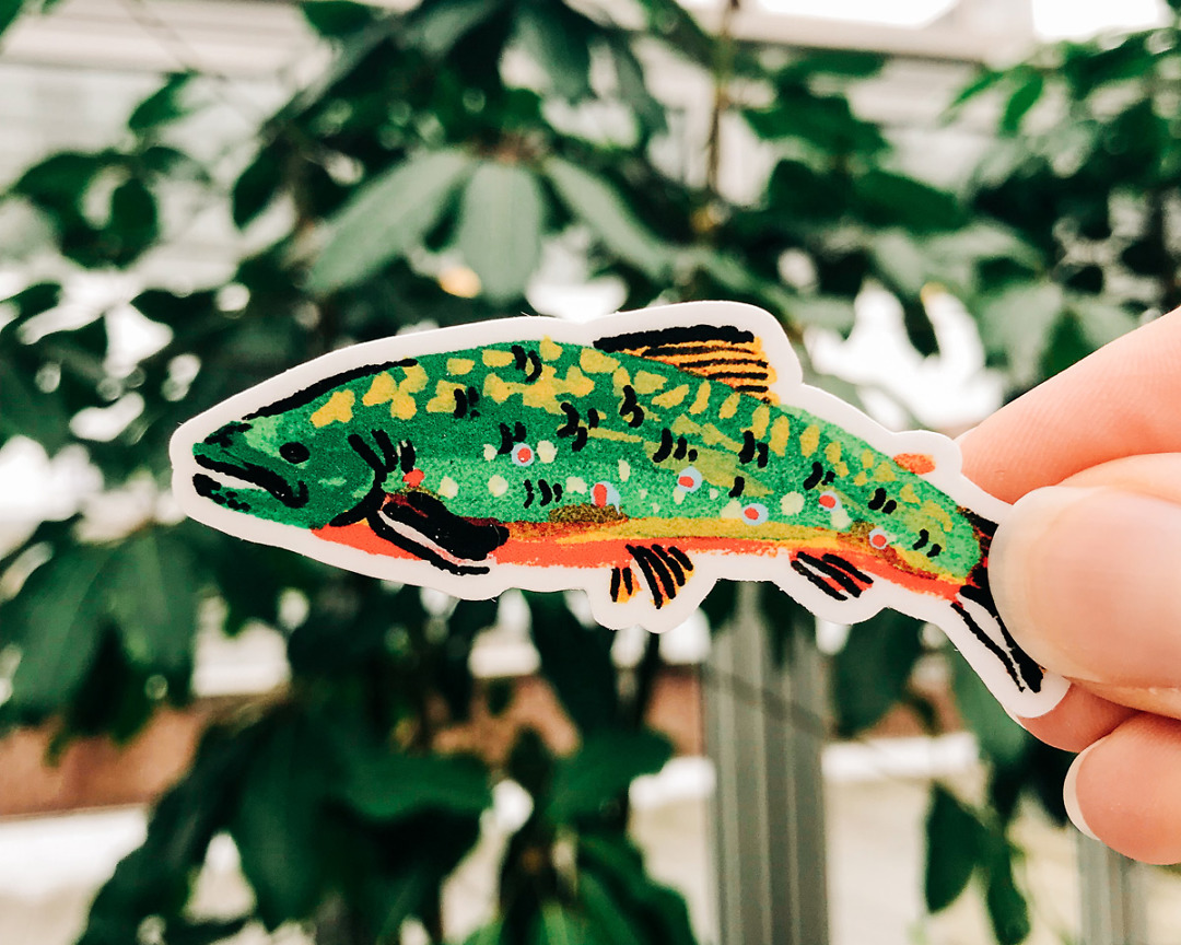 cute brook trout fish vinyl animal sticker art by wildship studio held against plants