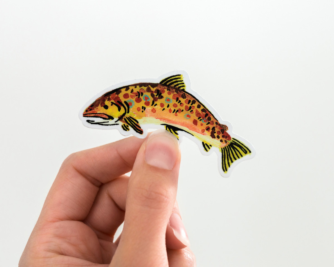 hand holding a cute brown trout fish vinyl sticker by wildship studio