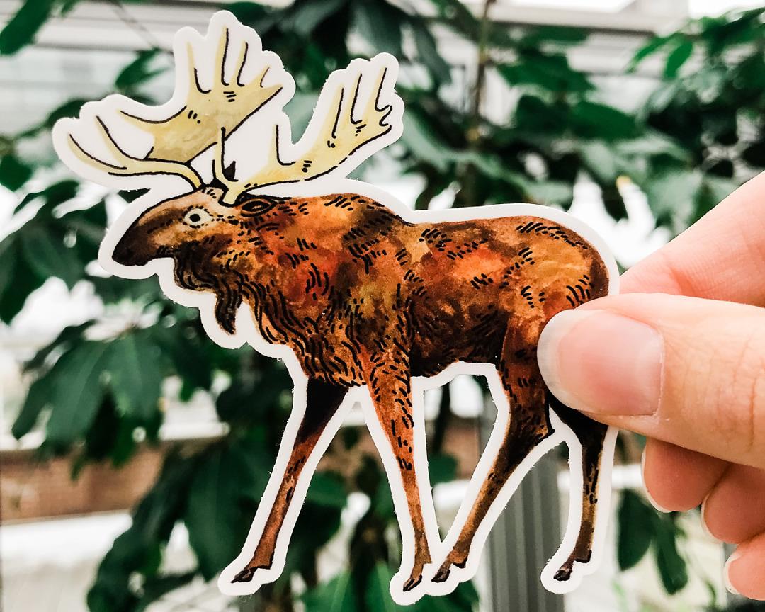 cute moose vinyl animal sticker art by wildship studio held against plants