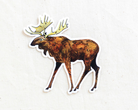 cute moose vinyl sticker by wildship studio