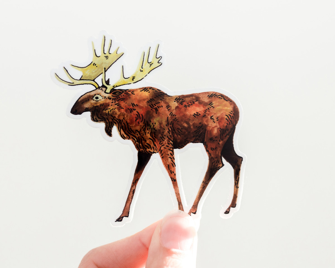 hand holding a cute moose vinyl sticker by wildship studio