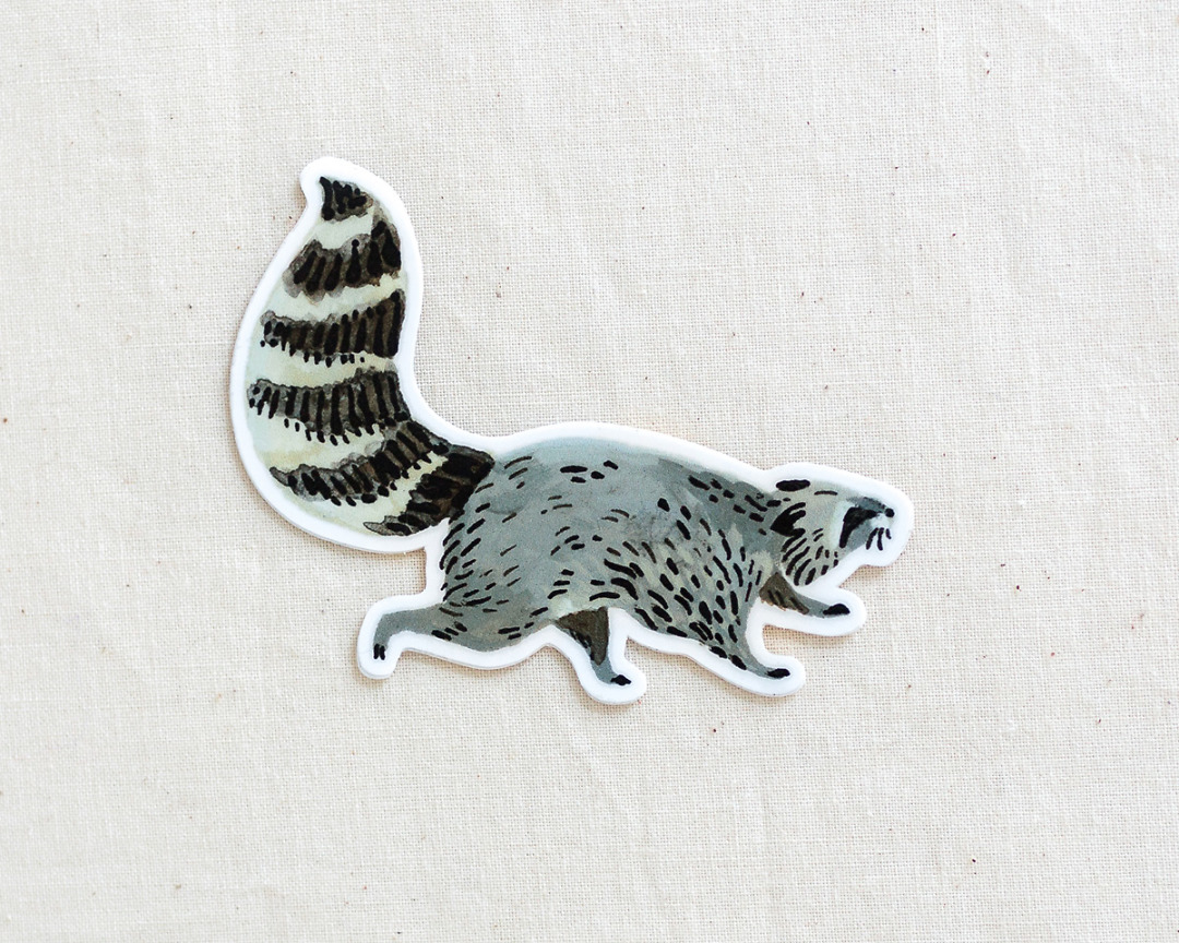 cute raccoon vinyl animal sticker by wildship studio